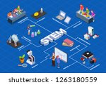 stem education isometric...   Shutterstock .eps vector #1263180559