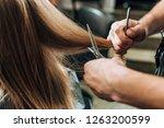 cropped shot of hairdresser...   Shutterstock . vector #1263200599