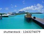 bora bora  french polynesia  2... | Shutterstock . vector #1263276079