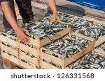 Mediterranean Sardines ...