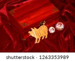 handmade mahogany jewelry box | Shutterstock . vector #1263353989