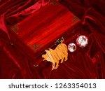 handmade mahogany jewelry box | Shutterstock . vector #1263354013