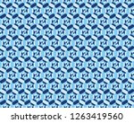 geometric camouflage hexagon... | Shutterstock .eps vector #1263419560