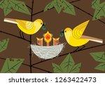 quirky bird family. parents... | Shutterstock . vector #1263422473
