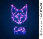 glowing neon effect cats club...