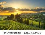 casale marittimo village ... | Shutterstock . vector #1263432439