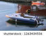 motor boat anchored on the water | Shutterstock . vector #1263434536