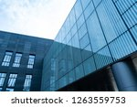 the skyscraper external... | Shutterstock . vector #1263559753