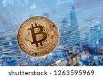 golden bitcoin agains... | Shutterstock . vector #1263595969