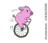 pig riding a vintage monocycle   Shutterstock .eps vector #1263625030