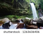 mahua waterfall is a plunge... | Shutterstock . vector #1263636406