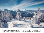 majestic carpathian mountains... | Shutterstock . vector #1263704560