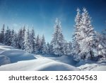 awesome winter landscape.... | Shutterstock . vector #1263704563