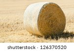 Harvest time with hay bales in the summer sun - stock photo