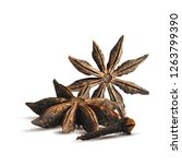 fragrant clove and tasty anise... | Shutterstock .eps vector #1263799390