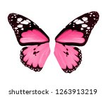 Stock photo wings of butterfly isolated on white background 1263913219