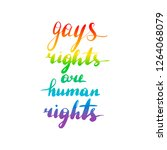 gays rights are human rights.... | Shutterstock . vector #1264068079