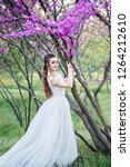 luxurious and stylish bride... | Shutterstock . vector #1264212610
