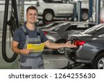 portrait of positive repairman... | Shutterstock . vector #1264255630