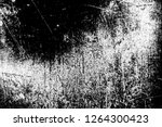abstract background. monochrome ... | Shutterstock . vector #1264300423