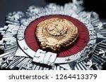 ussr   circa 1972  golden... | Shutterstock . vector #1264413379