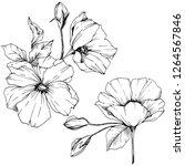 vector rosa canina. floral...   Shutterstock .eps vector #1264567846