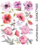 watercolor set with garden... | Shutterstock . vector #1264677460