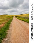 unpaved country road on the... | Shutterstock . vector #1264719673