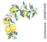 watercolor vintage wreath ... | Shutterstock . vector #1264874449
