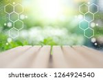 soft blur background with... | Shutterstock . vector #1264924540