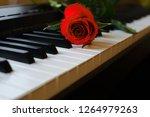 red rose lies on the white keys ... | Shutterstock . vector #1264979263