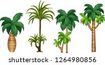 set of different palm tree... | Shutterstock .eps vector #1264980856