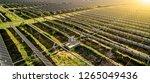 new energy solar energy in... | Shutterstock . vector #1265049436