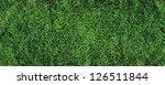 beautiful green grass texture ... | Shutterstock . vector #126511844