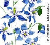 blue aquilegia floral botanical ... | Shutterstock . vector #1265126530