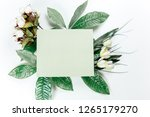 green sticky note with green... | Shutterstock . vector #1265179270