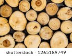 Small photo of Texture pattern wood background concept, many stump background A section of a tree branch annual growth rings, pale sapwood, dark heartwood, and pith, center dark spot.Dark radial line are small knot