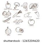 vegetable set vector outline... | Shutterstock .eps vector #1265204620