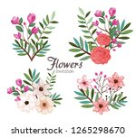 setof beautiful flowers and... | Shutterstock .eps vector #1265298670