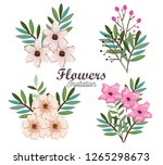 setof beautiful flowers and... | Shutterstock .eps vector #1265298673