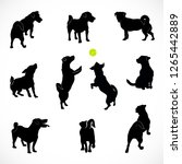 Stock vector set of silhouettes of small active and calm dog jack russell terrier rear top and front view of 1265442889