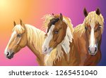 set of colorful vector... | Shutterstock .eps vector #1265451040
