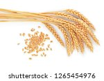 grain and ears of wheat... | Shutterstock . vector #1265454976