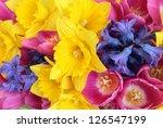 Daffodil  Hyacinth And Tulip...