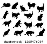 set vector silhouettes of the... | Shutterstock .eps vector #1265476069