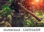 old ax in hemp  on the... | Shutterstock . vector #1265516209