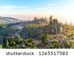 devasted forest in caues of... | Shutterstock . vector #1265517583