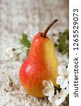 "beautiful pear cultivar ""trout""   Shutterstock . vector #1265529073"