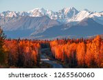 View Of Denali  Mt Foraker And...