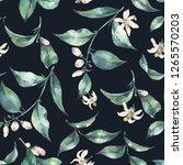 watercolor seamless exotic... | Shutterstock . vector #1265570203